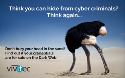 What are the Exposures of the Dark Web?